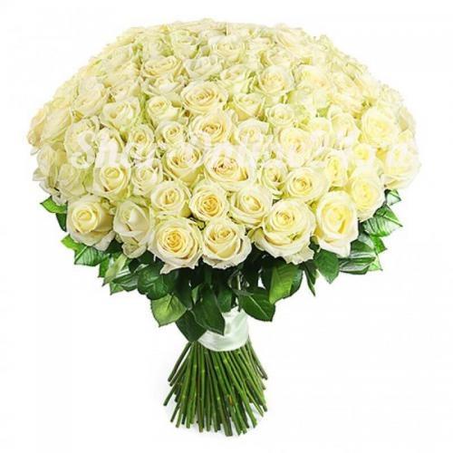 Букет белых роз Premium